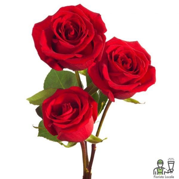 Tris rose rosse