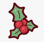 Fiori e Regali Natale