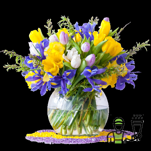 Iris e Tulipani